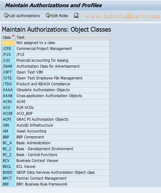 SAP TCode OY20 - Authorizations           Customizing