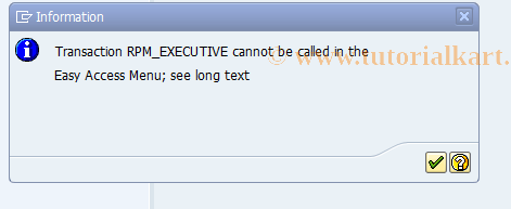 SAP TCode RPM_EXECUTIVE - Authorization for Executive