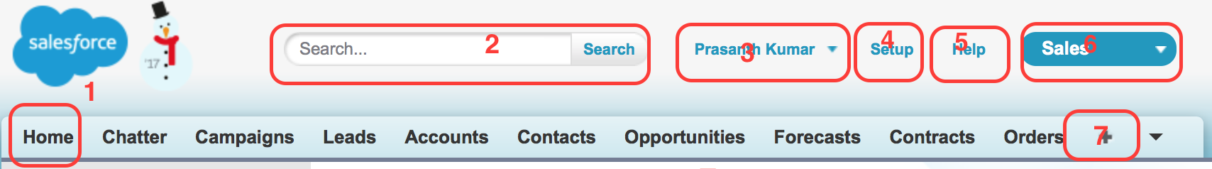 Navigating salesforce.com application