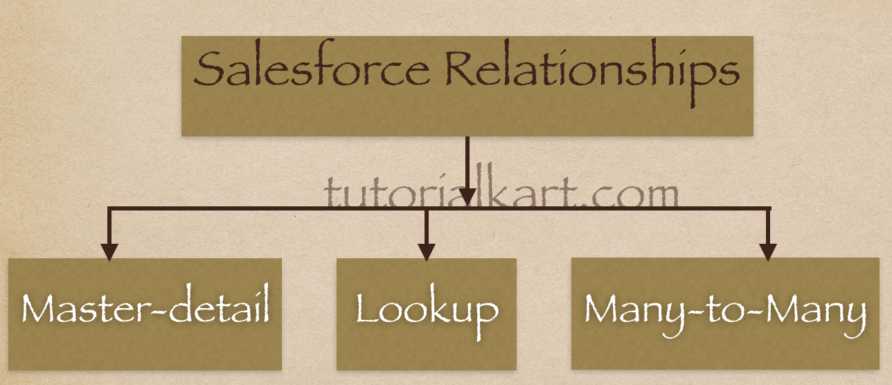 Salesforce Object Relationships
