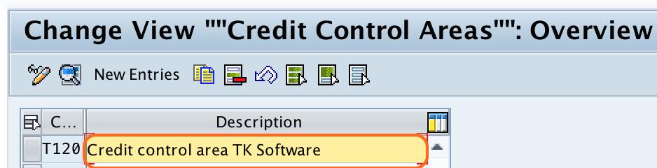 credit controal area description