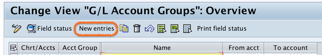 GL Account Groups new entries in SAP