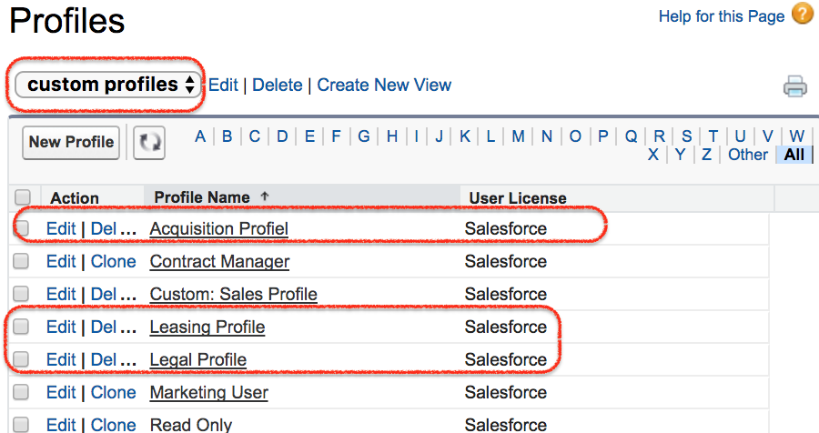 Salesforce record type