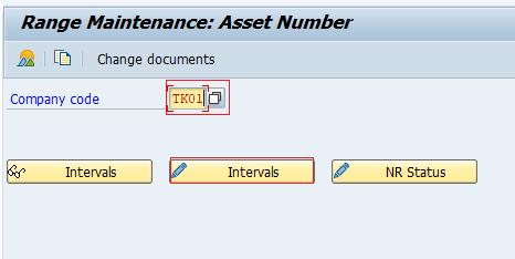 SAP range maintenance asset number