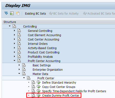 img path for dummy profit center SAP