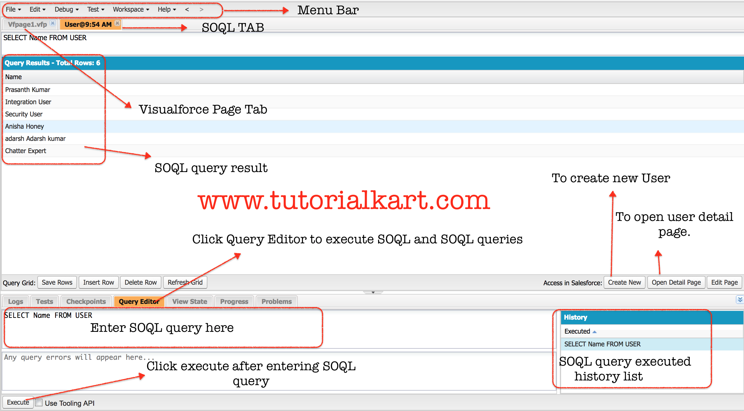 SOQL query in Salesforce Developer console