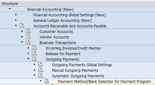 Automatic Payment Program SAP path
