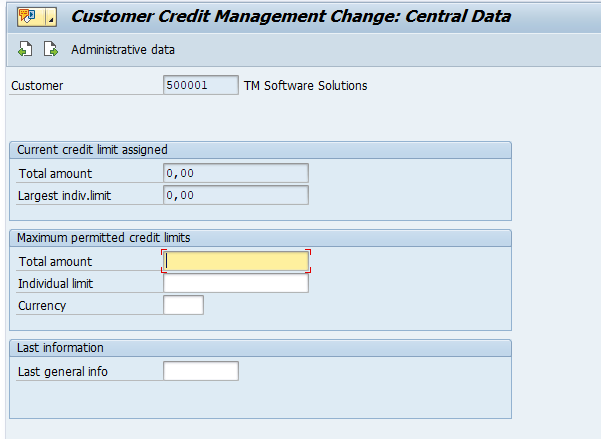 customer credit management central data SAP