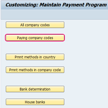 paying company codes SAP