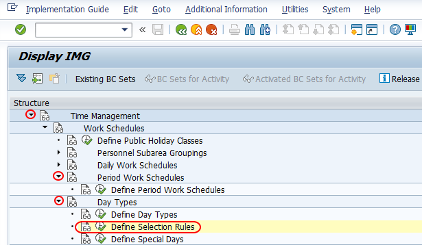 Define selection rules in SAP