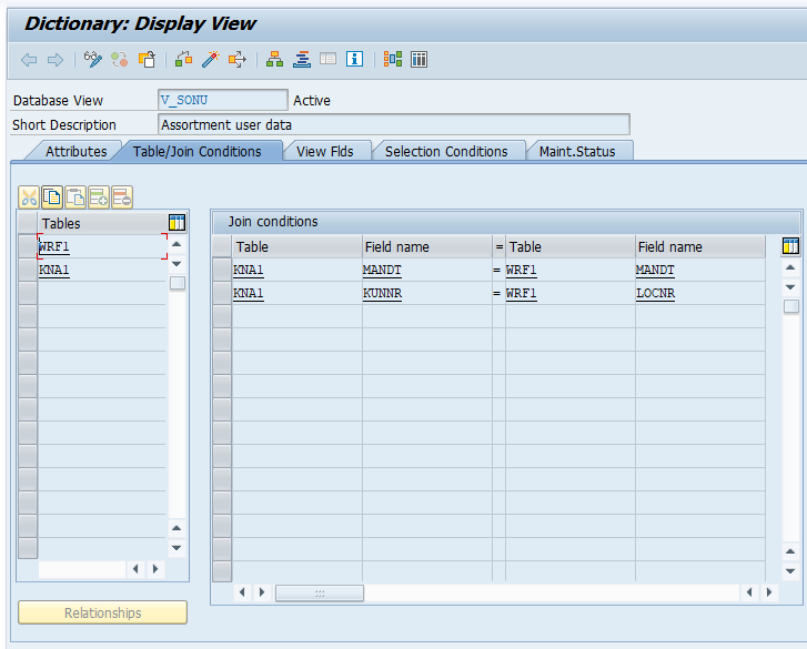 SAP ABAP Views in Data Dictionary