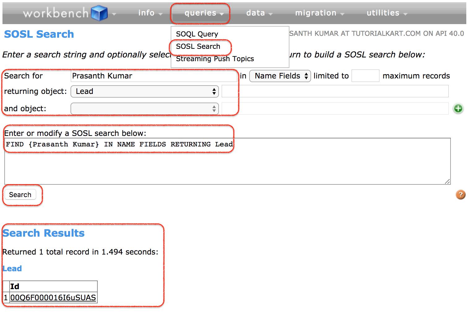 SOSL search in workbench Salesforce