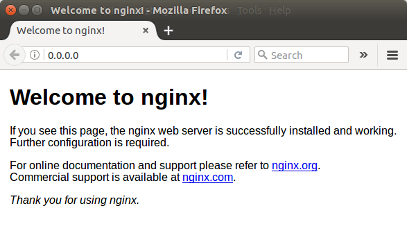 Docker NGINX - Dockerize NGINX with Web Application
