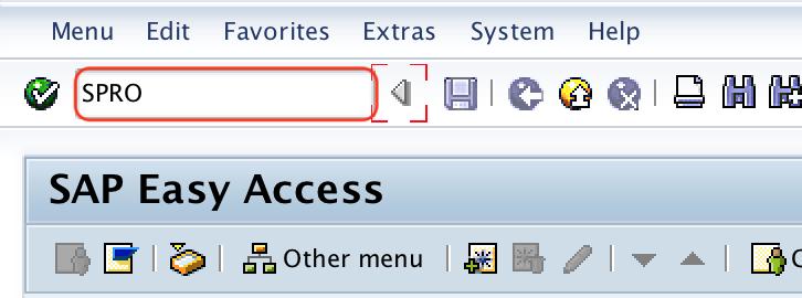 SPRO t-code SAP MAC