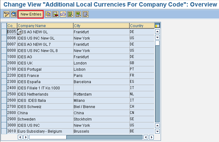 Additional local currencies for company code in SAP new entries