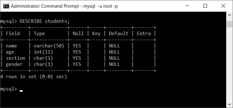 Describe MySQL Table structure