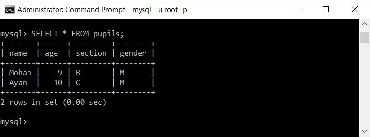 MySQL Duplicated Table Data
