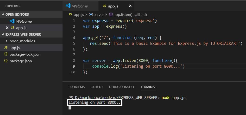 Express.js Basic Web Server Example