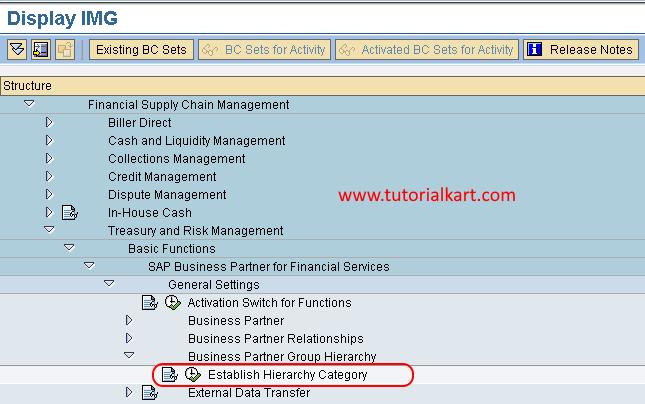 Establish Hierarchy Category in SAP FSCM