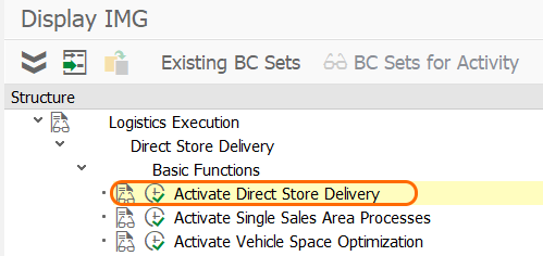 Activate direct store delivery in SAP
